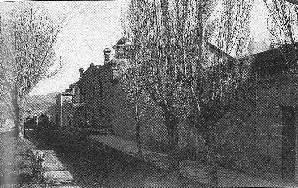 Nevada State PRison, Pre-1924 north wing trees